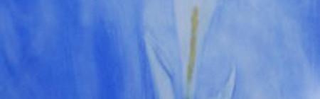 Sabato 13 febbraio Pittura ad acquerello, età 3 - 4