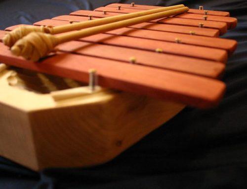 Il progetto di musico terapia della scuola Waldorf di Bologna nell'Aviva Community Fund