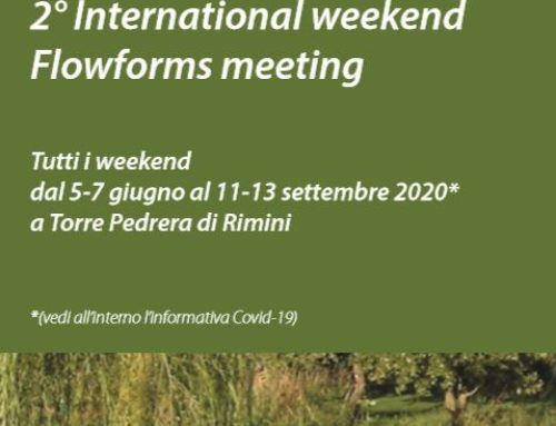 2° International weekend Flowforms meeting